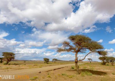 marocco nikon school viaggio fotografico workshop paesaggio viaggi fotografici deserto sahara marrakech 00012
